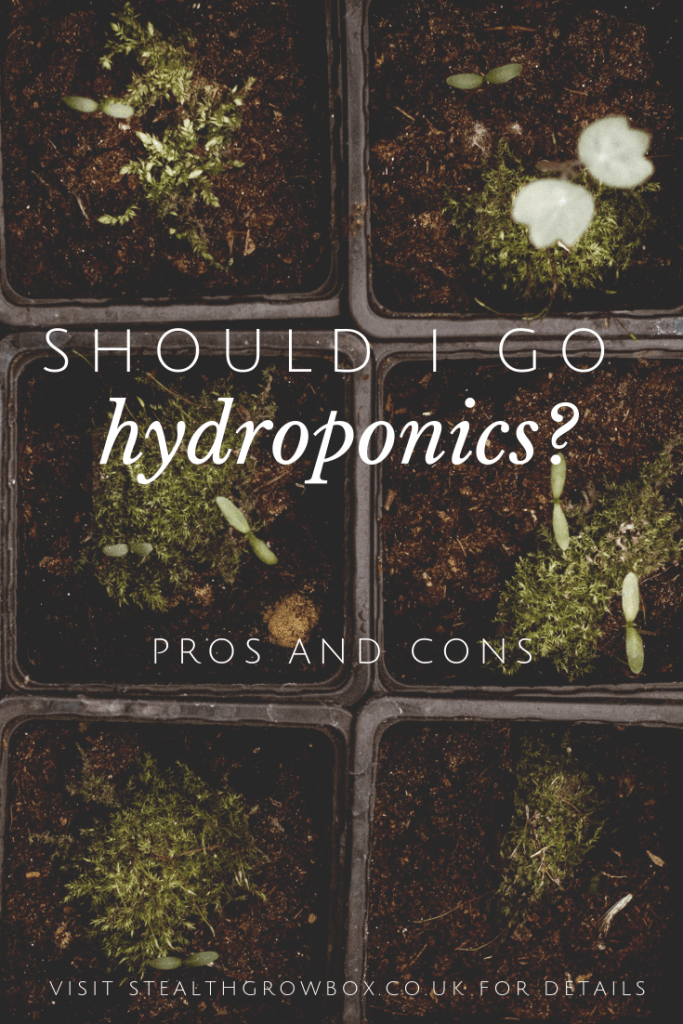 Should I go hydroponics?