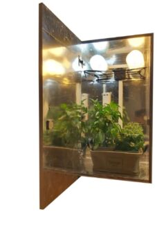 CFL stealth grow box cabinet9