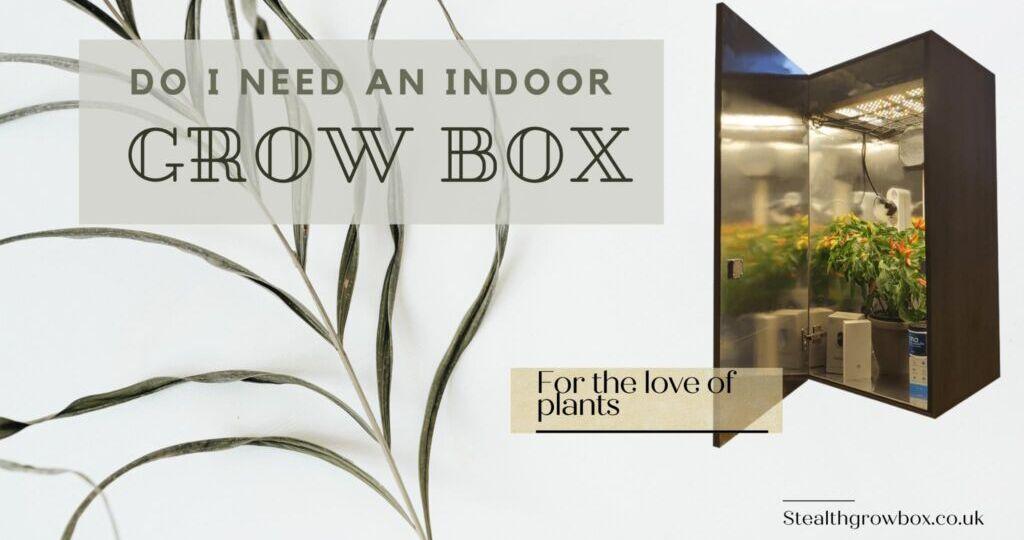 Do i need a grow box?